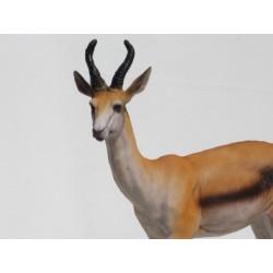 gazelle springbok en  resine
