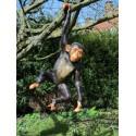 Statue résine chimpanzé à suspendre