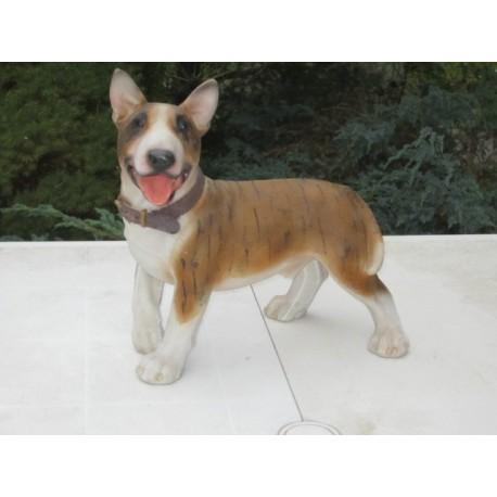chien Bullterrier