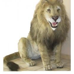 Tigre ou lion  entier taille réelle