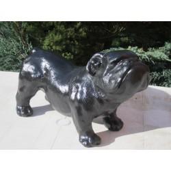 chien bouledogue Anglais