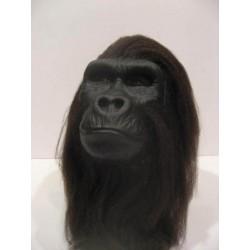 Tête gorille